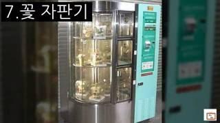 이색 자판기 TOP8