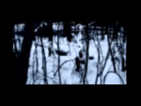 Empty Field - Dark Wood
