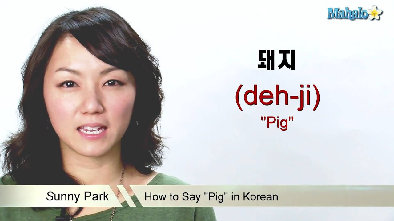 how to say what the heck in korean