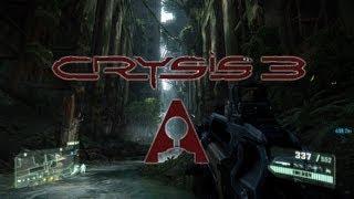 Analog Reviews: Crysis 3