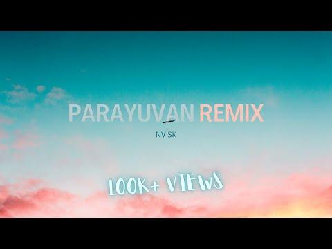 Parayuvan ishq   Lyric Video   Geo Paul   Remix Song    Nvsk
