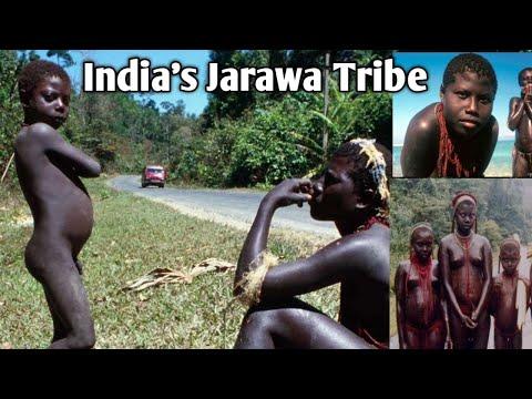 TRIBES OF ANDAMAN - Jarawa, Sentinelese, Onge || Baratang & Limestone Caves | Andaman | Ch-4, Day-3