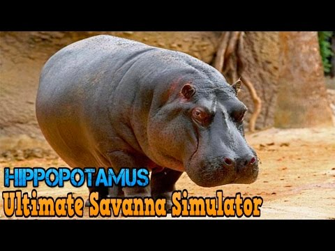 Ultimate Savanna Simulator #Hippopotamus By Gluten Free Games Action & Adventure iTunes/Android
