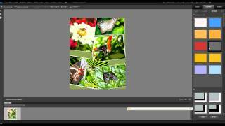 Photoshop Elements: Photo Collage in Elements 9