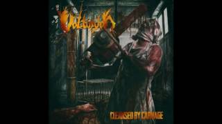 Volturyon - Pleasure of Molestation (feat. Masse Broberg)