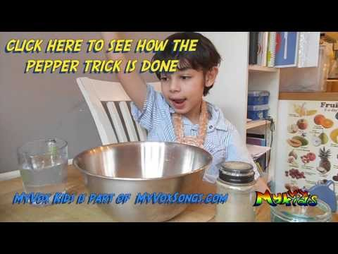 Sam's Magic Science Pepper Trick - MyVoxKids from YouTube · Duration:  1 minutes 14 seconds