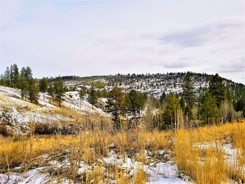 80 acre hunting property for sale in Oregon with natural spring!