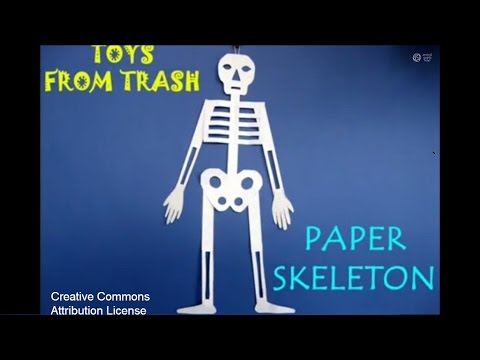photo about Printable Human Skeleton to Assemble identified as Printable Human Skeleton Toward Get Human Skeleton Provide
