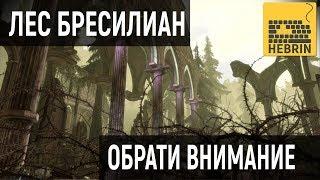 ОБРАТИ ВНИМАНИЕ - РУИНЫ БРЕСИЛИАН