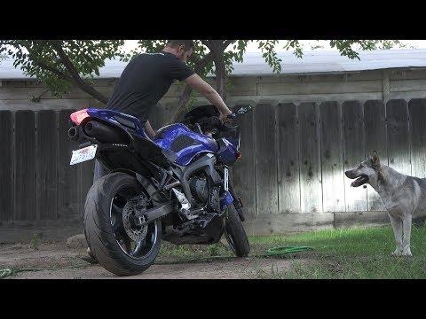 My $50 DIY Exhaust | Yamaha FZ6
