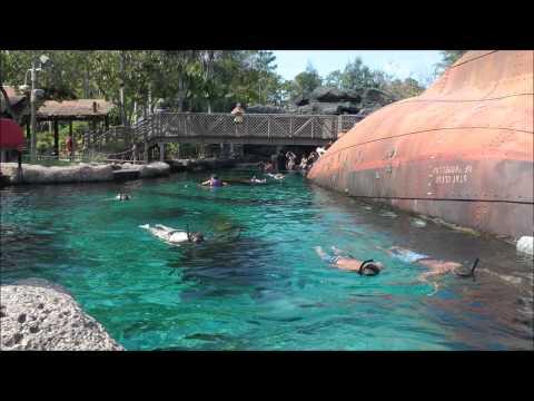Shark Reef, Typhoon Lagoon, Walt Disney World, (HD 1080p)
