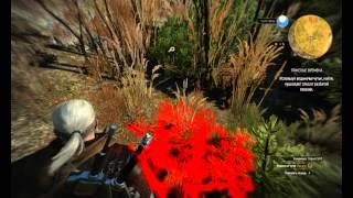 The Witcher 3 письмо для кузнеца в Каер Трольде