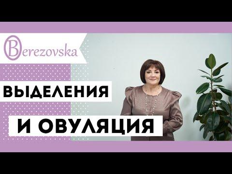 Выделения при овуляции должны ли быть и сколько - Др.Елена Березовская