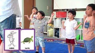Hop Little Rabbit | Teacher's Video