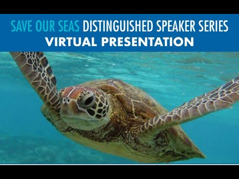Save Our Seas Distinguished Speakers Series: Sea Turtle Conservation