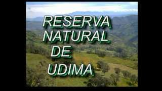 Lorena Huamán Aguilar, conservando los Bosques Nublados de Udima