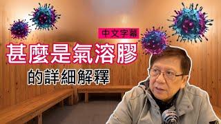 確診降但死亡升-甚麼是氣溶膠的詳細解釋-口罩理論上可如何重覆使用-中文字幕-蕭若元-理論蕭析-2020-02-09