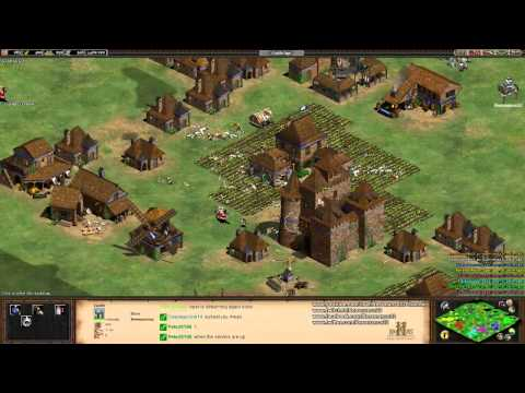 Aoe2 HD: 6v2 Insanely Difficult Custom AI (Match 12) (Arabia)