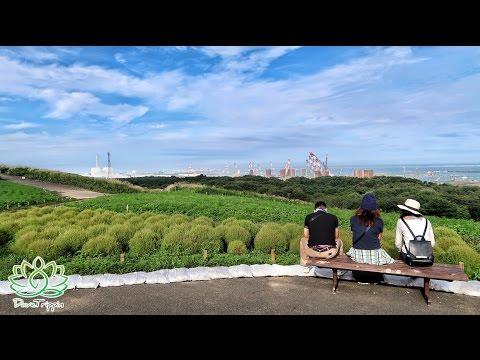 Seaside Park In Ibaraki Japan   Hitachi Koen