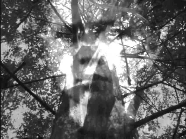 darkwood-lied-am-feuer-neo-folk