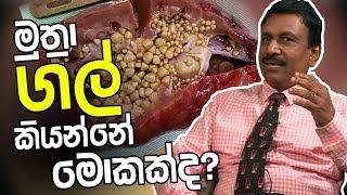 මුත්රා ගල් කියන්නේ මොකක්ද?   Piyum Vila   10 - 04 - 2019   Siyatha TV Thumbnail