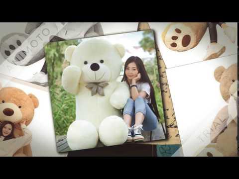 my teddy bear pics