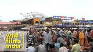 Puri city celebrate the Festival of Chariot - Odisha
