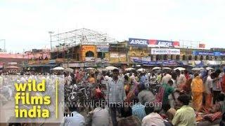 Puri city celebrate the Festival of Chariot - Odisha