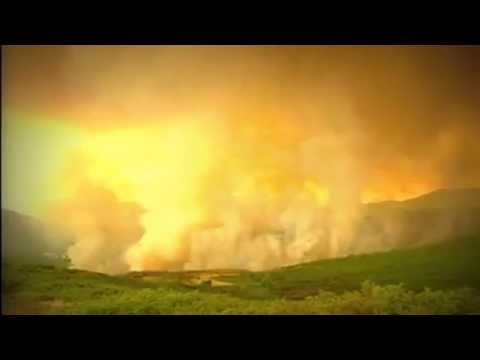 Portugal wildfires  Hundreds of firefighters tackle forest fires   BBC News
