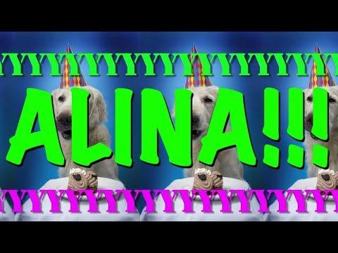 happy-birthday-alina!---epic-happy-birthday-song