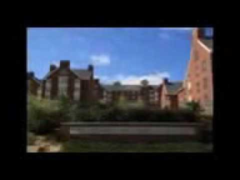 University of Washington Online Degree