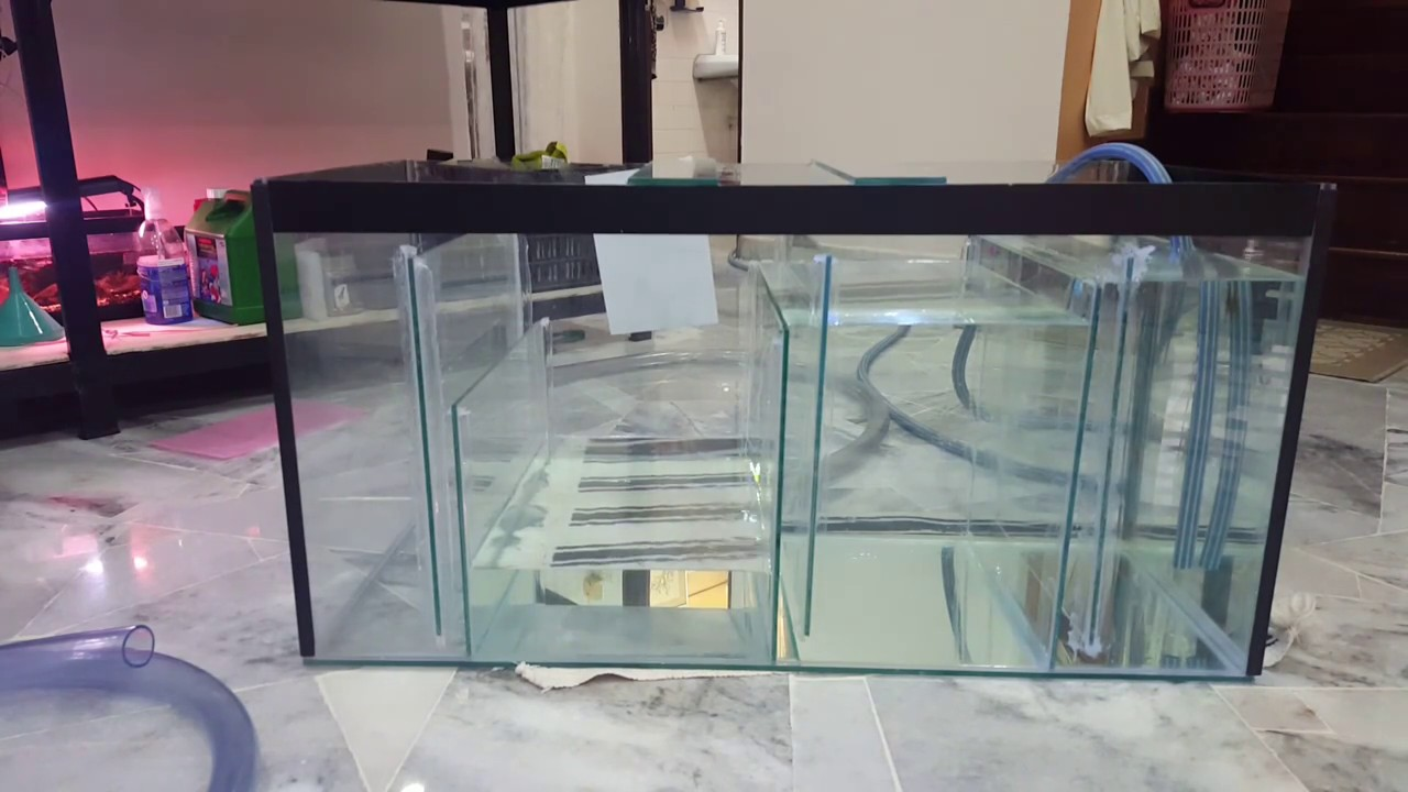 20 Gallon Diy Sump Test For Freshwater Tank