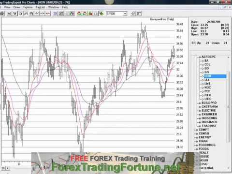 Olesia forex trading for a living
