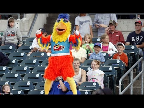 The San Diego Chicken: A baseball legend