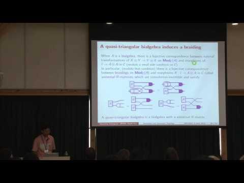 Masahito Hasegawa, Denotational semantics and quantum topology
