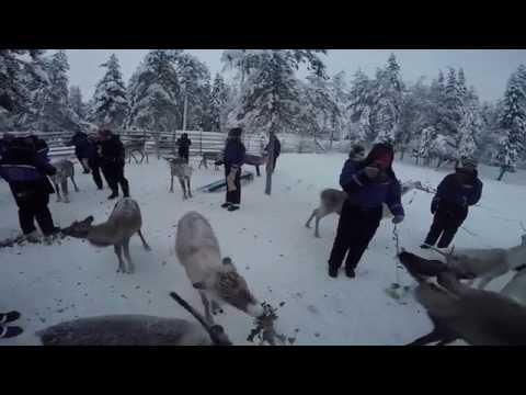 Vakantie Lapland januari 2015