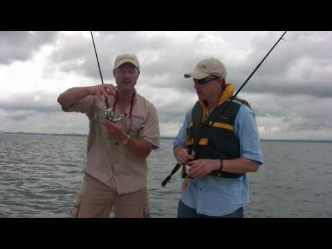 Three Quick Tips You Must Know Before You Buy A Spinning Reel