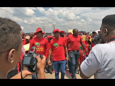 'Whites must be happy we are not calling for genocide': Malema on land expropriation