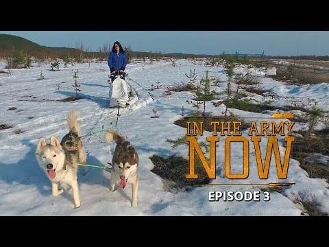 Are reindeer and huskies really part of Russian Army transport? – In the Army Now Ep.3
