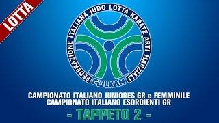 Tappeto 2