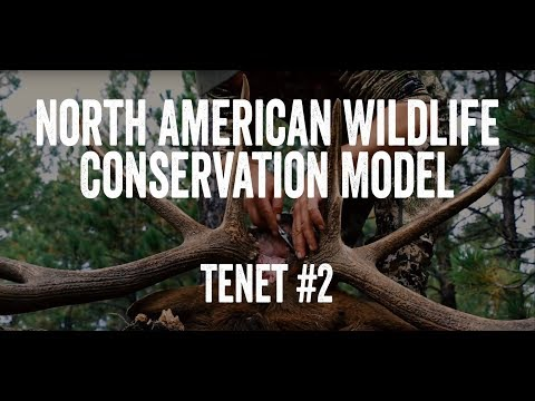 North American Wildlife Conservation Model - Tenet #2