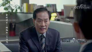 《普法栏目剧》 20190811 爱的谎言·精编版(大结局)| CCTV社会与法