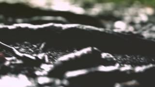 Mylène Farmer - Je Te Dis Tout Prelude Remix