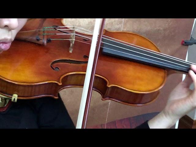 Ifstrings Private Stock Classic #152 Guarneri del Gesu 1743