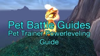 [wow] How To: Powerlevel Battle Pets Vs Trainers