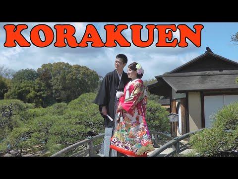 Korakuen Garden in Sakura Season ✿ Okayama ✿ 岡山市の後楽園 ✿ Japan As It Truly Is
