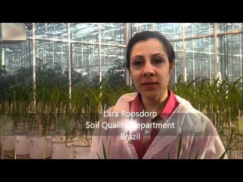 Masters in Organic Agriculture - Wageningen University