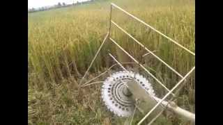 Simple Rice Harvester