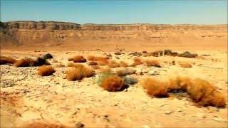 Tinariwen ~ Toumast Tincha