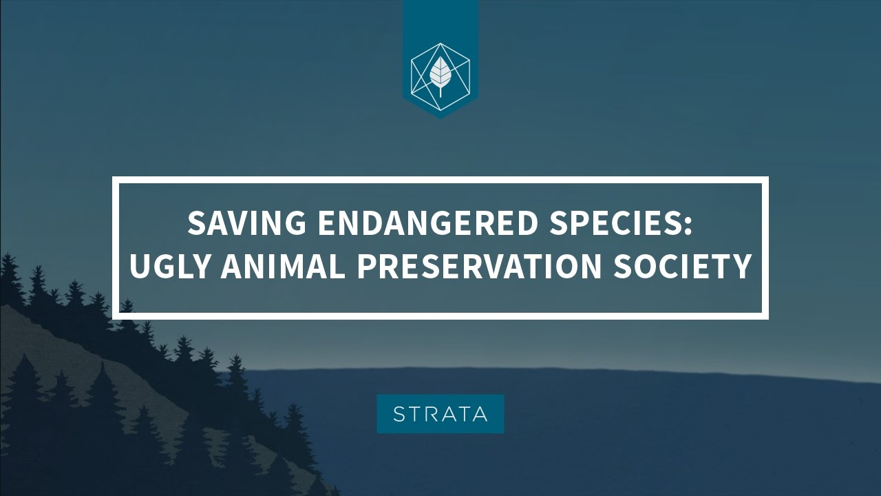 Saving Endangered Species: The Ugly Animal Preservation Society - YouTube